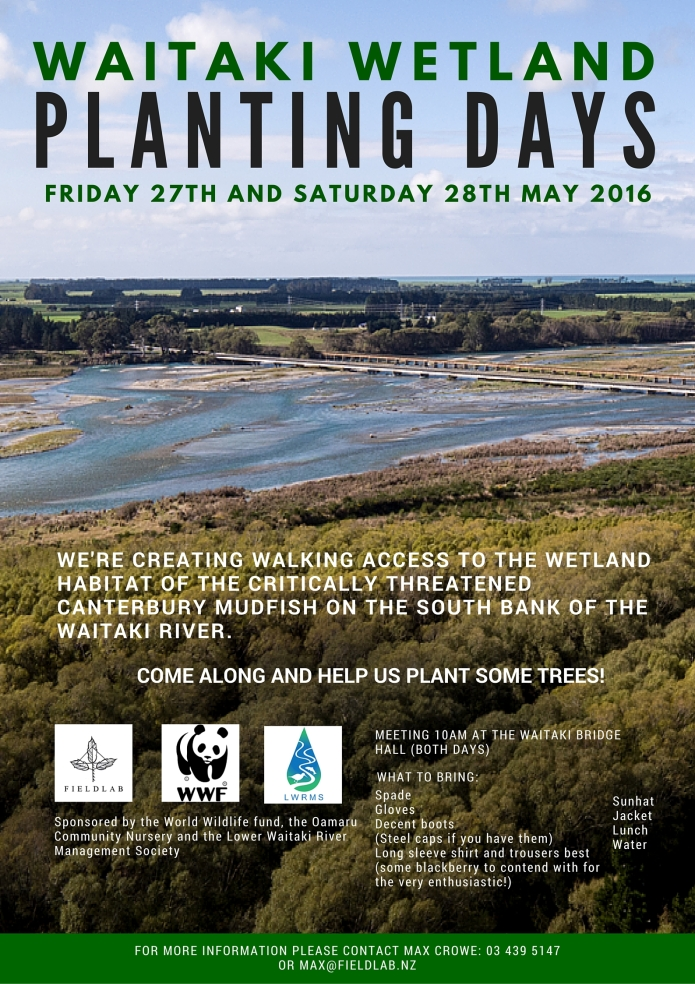 WAITAKI WETLAND PLANTING DAYS