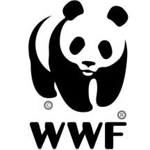 WWF 500